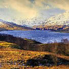 Ben Lomond by Don Alexander Lumsden (Echo7)