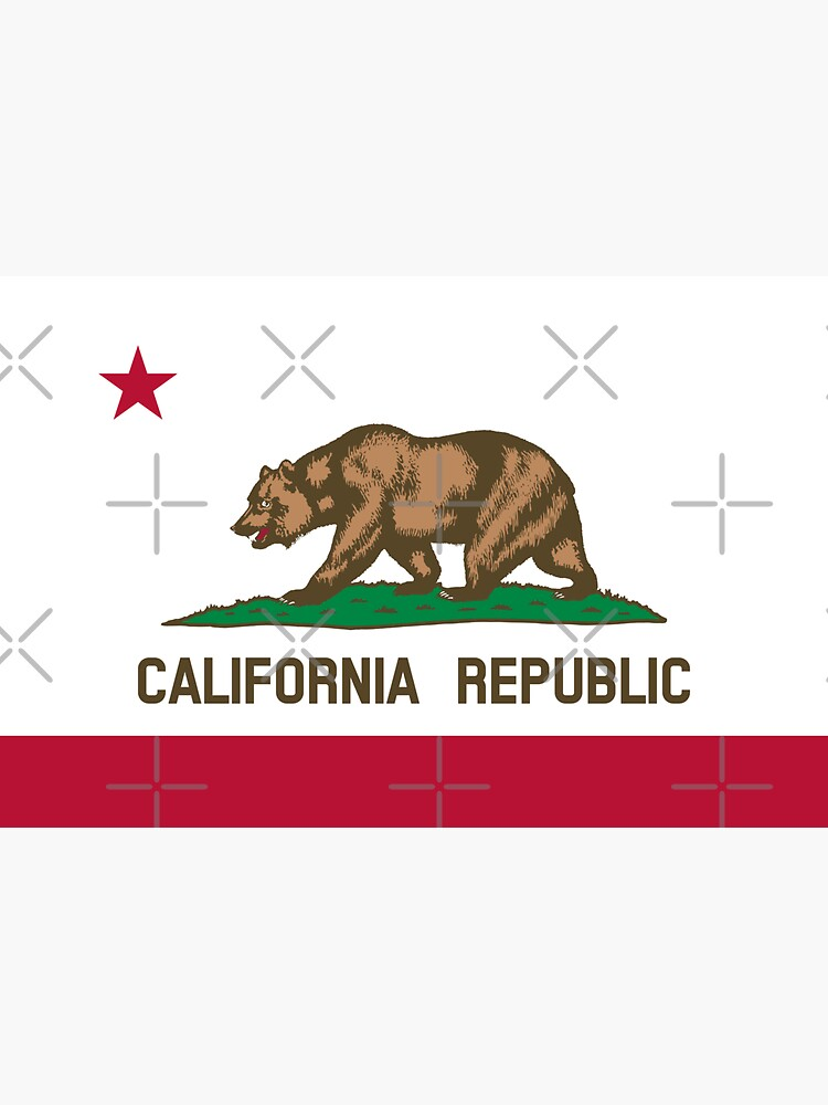 Flag of California Republic / CA / Cali / Californian Official State Flag (USA) by states