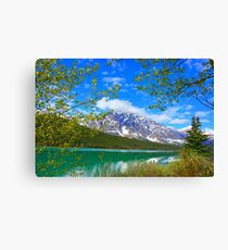 Jasper National Park, Alberta Canvas Print