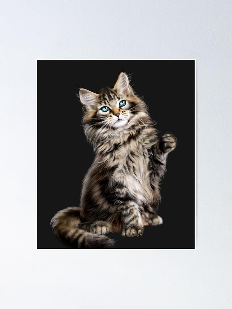 Asian Semi Longhair Siberian Cat Maine Coon Norwegian Forest Cat Kitten Poster By Pappviktor Redbubble
