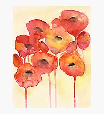 Red Poppy Fotodruck
