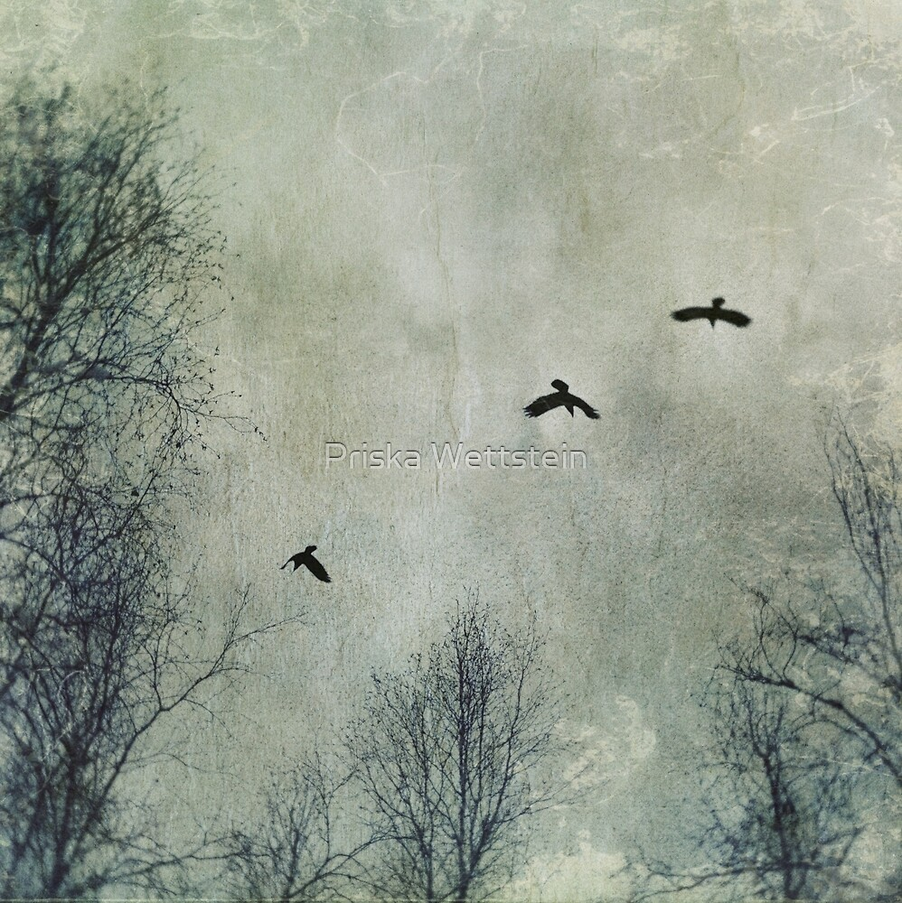 Three Ravens by Priska Wettstein