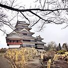 Matsumoto Castle by cheska