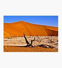 Dead Vlei (Deadvlei) Sossusvlei Namibia Africa lanscape Photographic Print