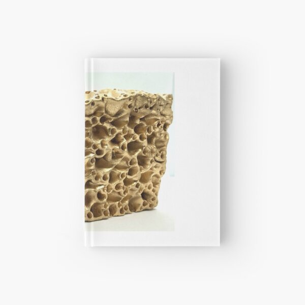 Gold Love Coral Reef Sculpture Inspired by Great Barrier Reef Australia Hardcover Journal