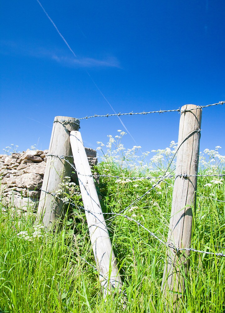 The Fence across the Cotswolds by Jeff  Wilson