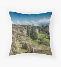 Pompei Throw Pillow