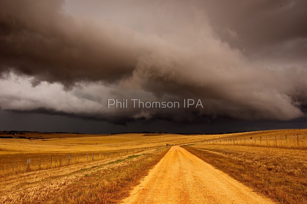 """""""Road To Ruination"""" by Phil Thomson IPA"""