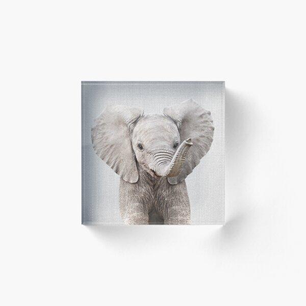 Baby Elephant - Colorful Acrylic Block