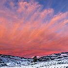Yellowstone sunset by Linda Sparks