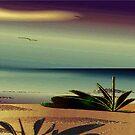 Sunset on the beach by IrisGelbart
