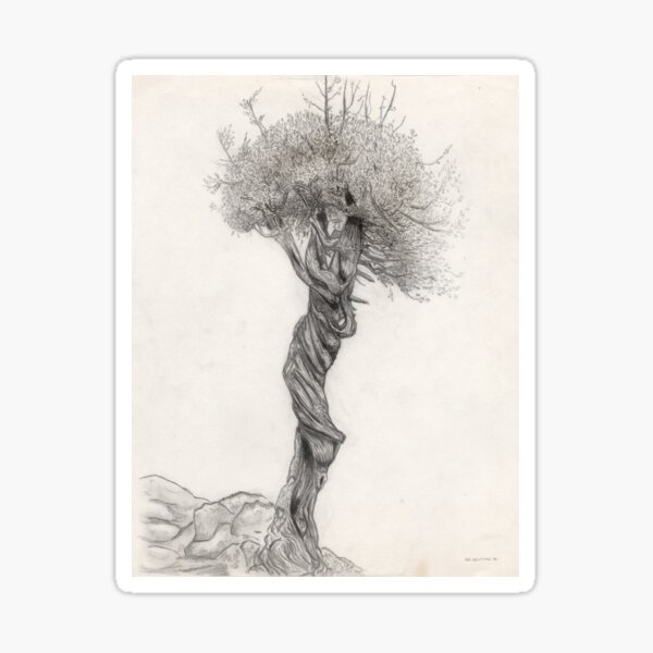 The Witch Tree of Lake Superior Sticker