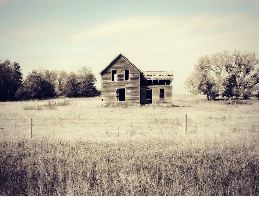 Vacant by BarnArtandMore