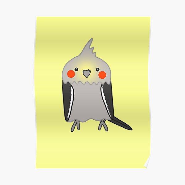 Cute grey cockatiel bird Poster