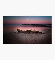 moon set @ sunrise Photographic Print