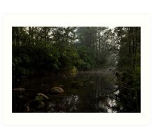 Kangaroo Valley - Peacefull Creek view 01 Art Print