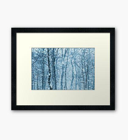 Snow Falling  Framed Print