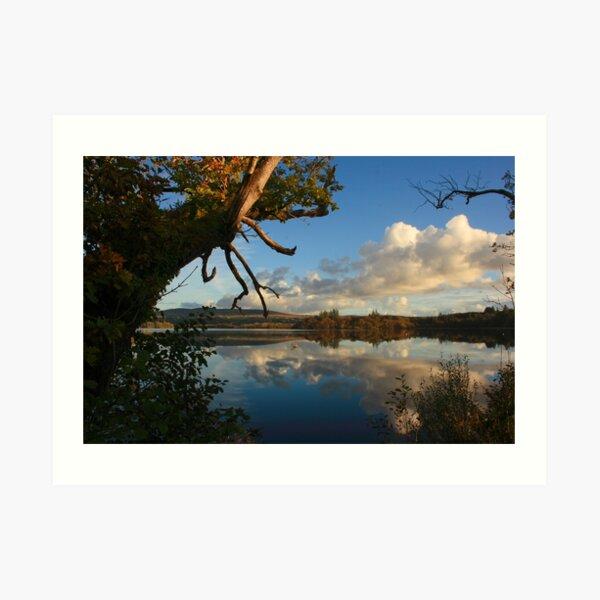 Lough Eske Shore Art Print
