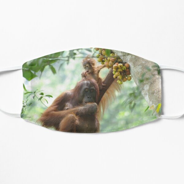 Wild orangutan mother and child in Kalimantan Mask