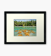 split tropical beach shore starfish underwater Framed Print