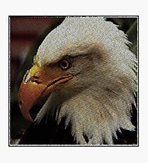 ASCii EQUAL EAGLE by ROOTCAT Photographic Print