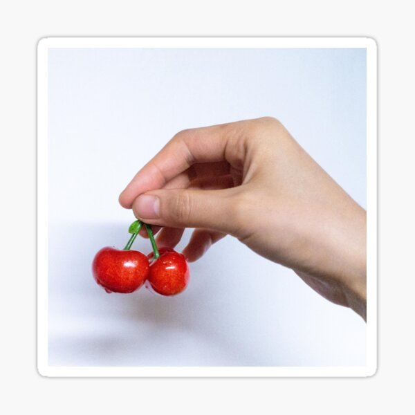 Red Cherry Pattern,  Fabric, A Hand Holding Red Cherry. Sticker