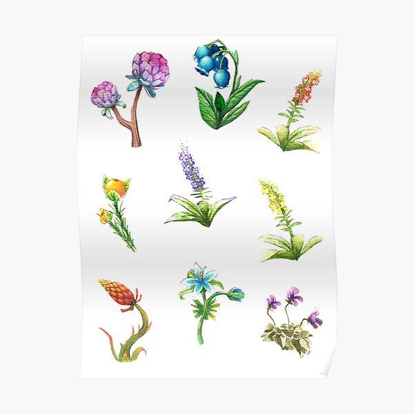 BOTW flowers Poster
