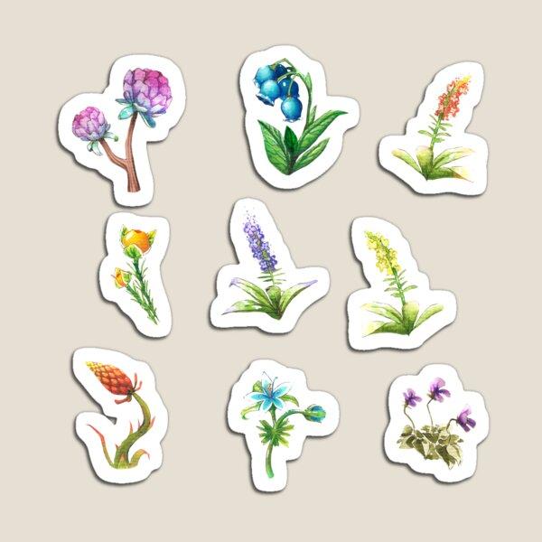 BOTW flowers Magnet