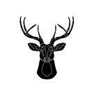 Line deer, wireframe by Alejandro Durán Fuentes