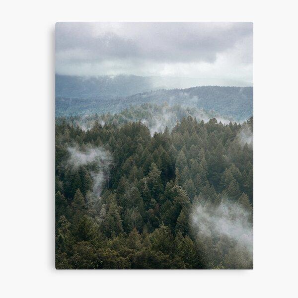 Misty Mountain Hop Metal Print