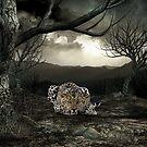 Solitude by Lisa  Weber