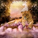 Lions Pond by Lisa  Weber