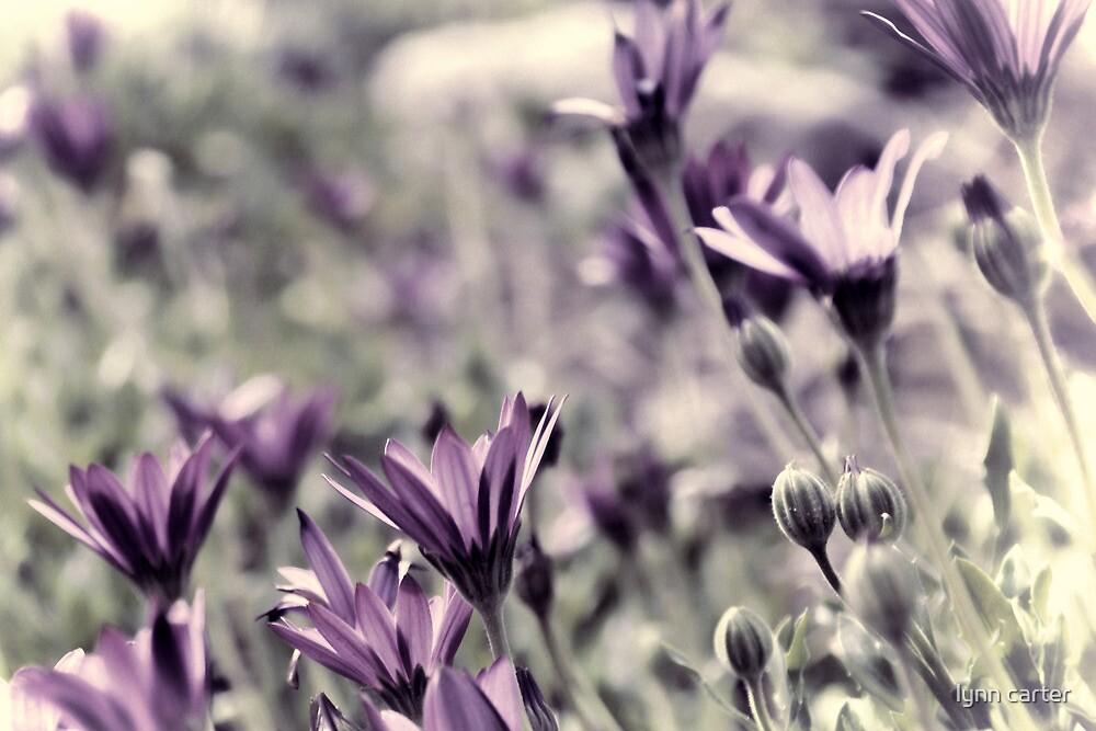 Spring Blooms.............. by lynn carter