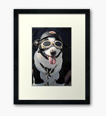 Biker Dog Framed Print
