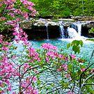 Kings River Falls by NatureGreeting Cards ©ccwri