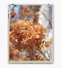 Dried Hydrangea in the snowy sun iPad Case/Skin
