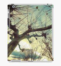 Winter landscape iPad Case/Skin