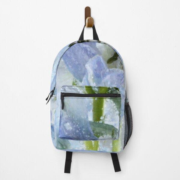 Bluish Chiffon Backpack