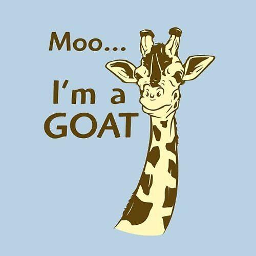 Moo- Im a Goat by abonilla