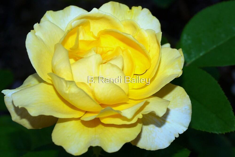 Special yellow by ♥⊱ B. Randi Bailey