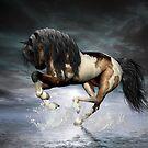 Dancing On Water by Lisa  Weber