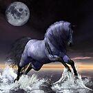 Midnight's Moon by Lisa  Weber
