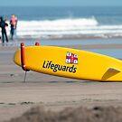 RNLI Lifeguards surf board by Martyn Franklin