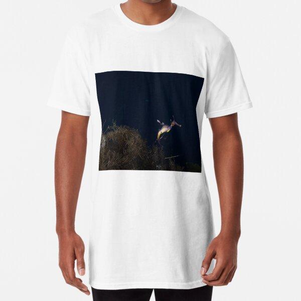 Weedy Seadragon Long T-Shirt