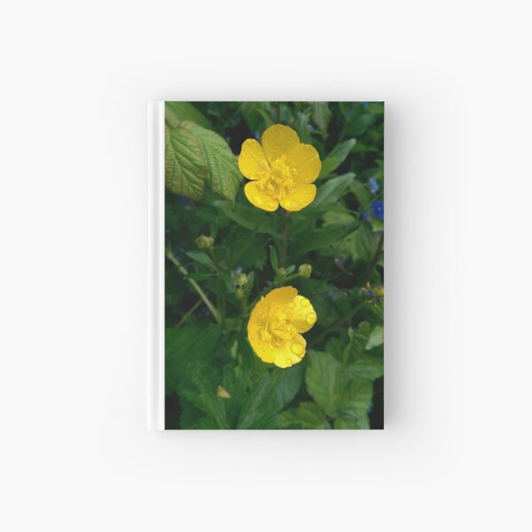 Buttercups Hardcover Journal