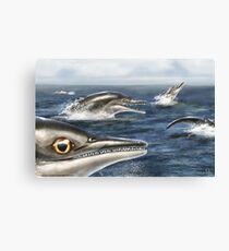 Barracudasaurus Canvas Print