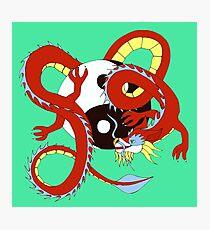 Chinese Dragon of Balance Photographic Print