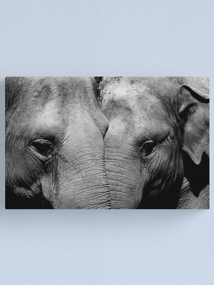Alternate view of Elephant Mirror Canvas Print