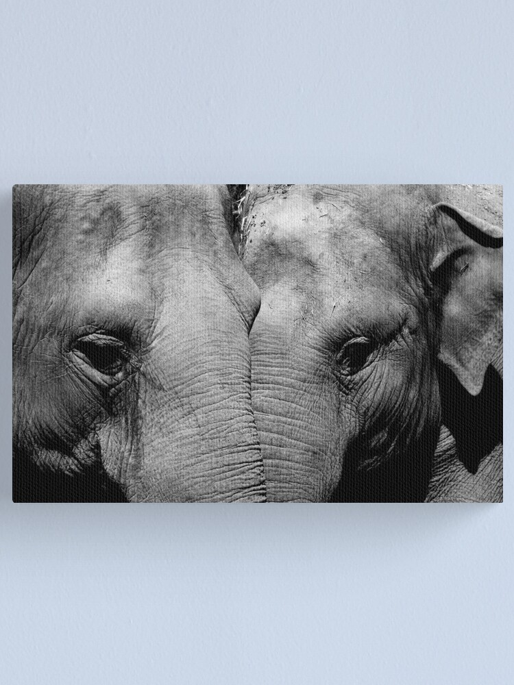 Alternate view of Elephant Mirror Canvas Print