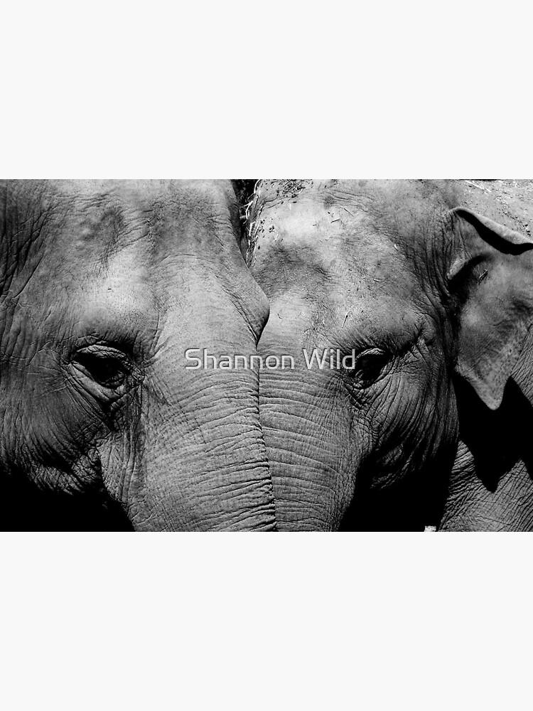 Elephant Mirror by ShannonPlummer
